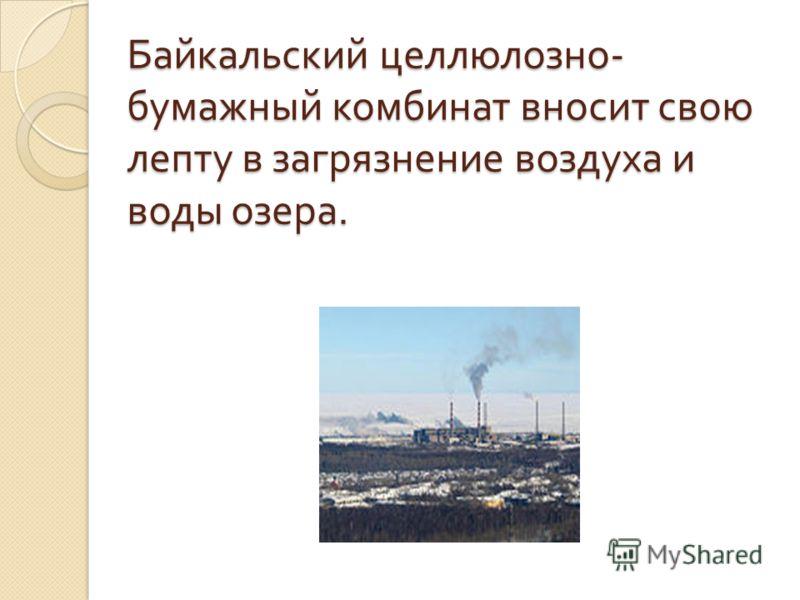 Байкальский целлюлозно - бумажный комбинат вносит свою лепту в загрязнение воздуха и воды озера.