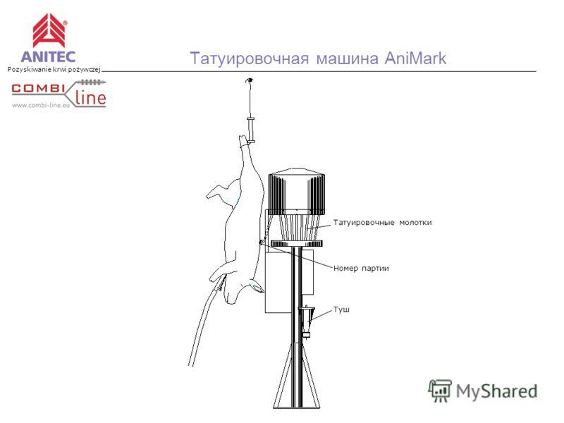 Pozyskiwanie krwi pożywczej Татуировочная машина AniMark Номер партии Туш Татуировочные молотки