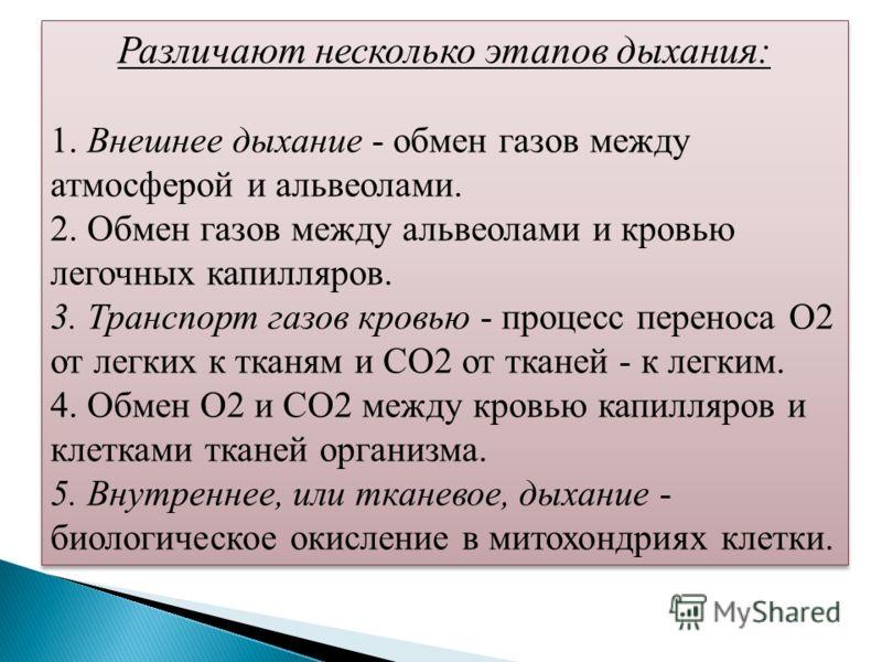 Различают несколько этапов дыхания: 1. Внешнее дыхание - обмен газов между атмосферой и альвеолами. 2. Обмен газов между альвеолами и кровью легочных капилляров. 3. Транспорт газов кровью - процесс переноса О2 от легких к тканям и СО2 от тканей - к л