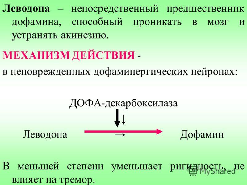 Леводопа – непосредственный предшественник дофамина, способный проникать в мозг и устранять акинезию. МЕХАНИЗМ ДЕЙСТВИЯ - в неповрежденных дофаминергических нейронах: ДОФА-декарбоксилаза Леводопа Дофамин В меньшей степени уменьшает ригидность, не вли
