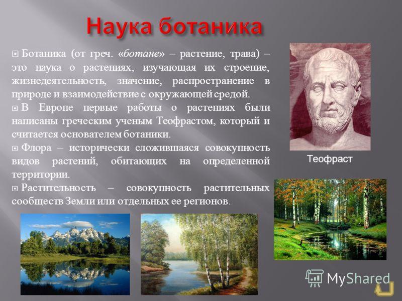 Ботаника ( от греч. « ботане » – растение, трава ) – это наука о растениях, изучающая их строение, жизнедеятельность, значение, распространение в природе и взаимодействие с окружающей средой. В Европе первые работы о растениях были написаны греческим
