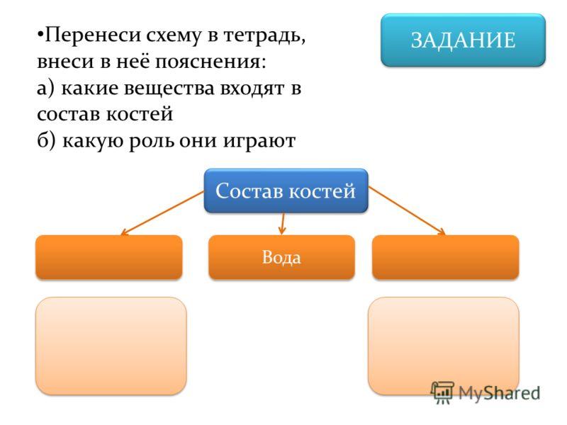 ЗАДАНИЕ Перенеси схему в тетрадь, внеси в неё пояснения: а) какие вещества входят в состав костей б) какую роль они играют Состав костей Вода