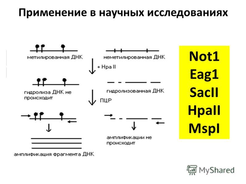 Применение в научных исследованиях Анализ уровня метилирования ДНК – Метил-чувствительная ПЦР – Метил-специфичная ПЦР – Технология «ПЦР-чип» для анализа метилирования промоторов генов – Анализ кривой плавления ДНК, обработанной бисульфитом Na (MS-HRM