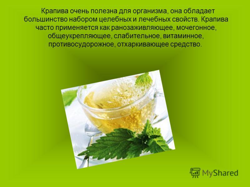 Крапива очень полезна для организма, она обладает большинство набором целебных и лечебных свойств. Крапива часто применяется как ранозаживляющее, мочегонное, общеукрепляющее, слабительное, витаминное, противосудорожное, отхаркивающее средство.