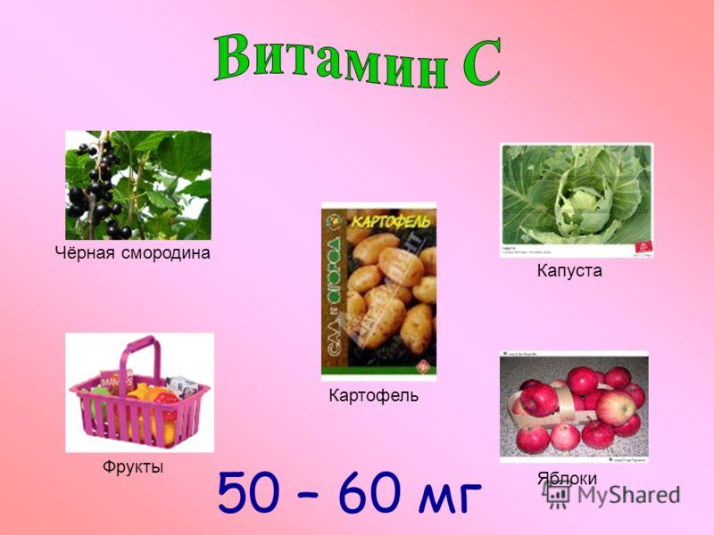 Чёрная смородина Фрукты Картофель Капуста Яблоки 50 – 60 мг