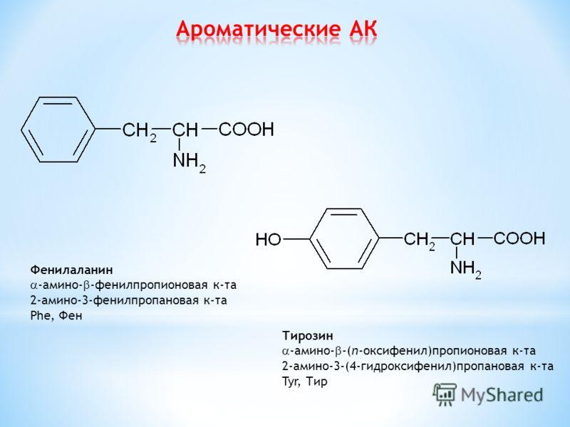 Фенилаланин -амино- -фенилпропионовая к-та 2-амино-3-фенилпропановая к-та Phe, Фен Тирозин -амино- -(п-оксифенил)пропионовая к-та 2-амино-3-(4-гидроксифенил)пропановая к-та Tyr, Тир