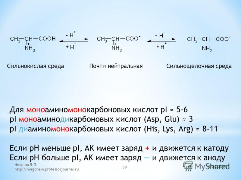 12.05.2013 Нижник Я.П. http://norgchem.professorjournal.ru 59 Сильнокислая среда Почти нейтральная Сильнощелочная среда Для моноаминомонокарбоновых кислот pI 5-6 pI моноаминодикарбоновых кислот (Asp, Glu) 3 pI диаминомонокарбоновых кислот (His, Lys,