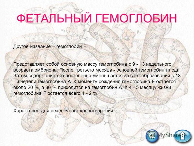 ФЕТАЛЬНЫЙ ГЕМОГЛОБИН Другое название – гемоглобин F. Представляет собой основную массу гемоглобина с 9 - 13 недельного возраста эмбриона. После третьего месяца - основной гемоглобин плода. Затем содержание его постепенно уменьшается за счет образован