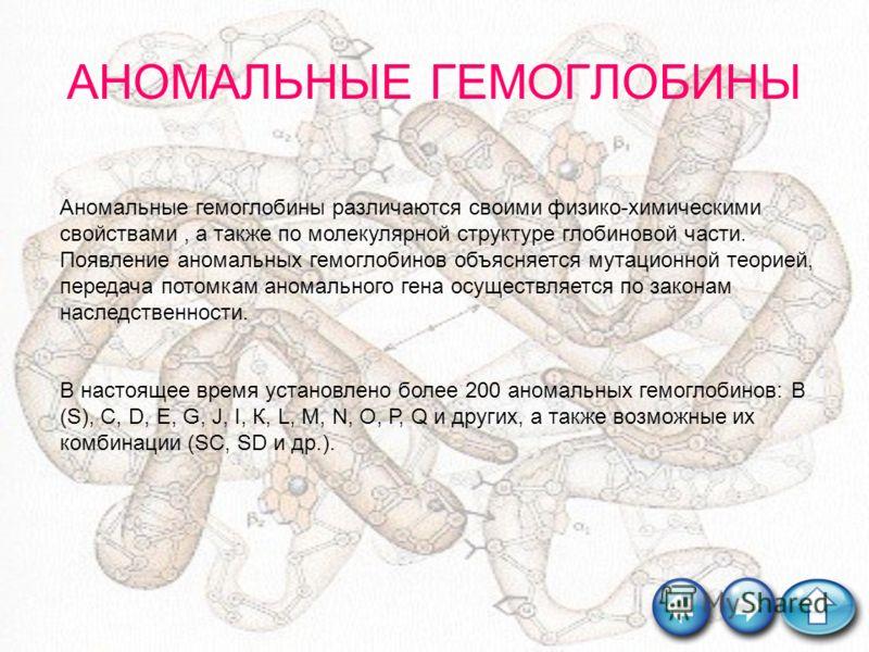 АНОМАЛЬНЫЕ ГЕМОГЛОБИНЫ Аномальные гемоглобины различаются своими физико-химическими свойствами, а также по молекулярной структуре глобиновой части. Появление аномальных гемоглобинов объясняется мутационной теорией, передача потомкам аномального гена