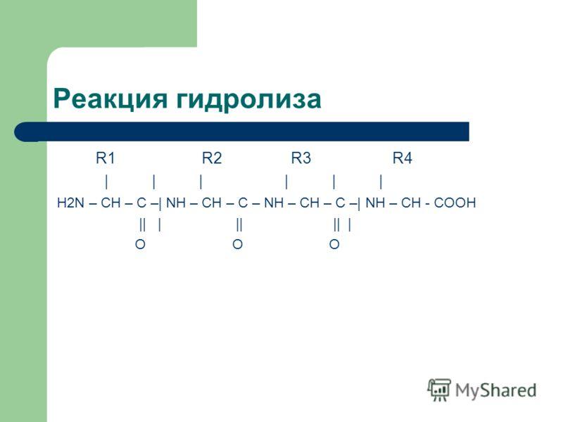 Реакция гидролиза R1 R2 R3 R4 | | | | | | H2N – CH – C –| NH – CH – C – NH – CH – C –| NH – CH - COOH || | || || | O O O