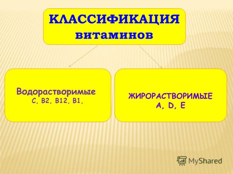 КЛАССИФИКАЦИЯ витаминов Водорастворимые С, В2, В12, В1, ЖИРОРАСТВОРИМЫЕ А, D, E