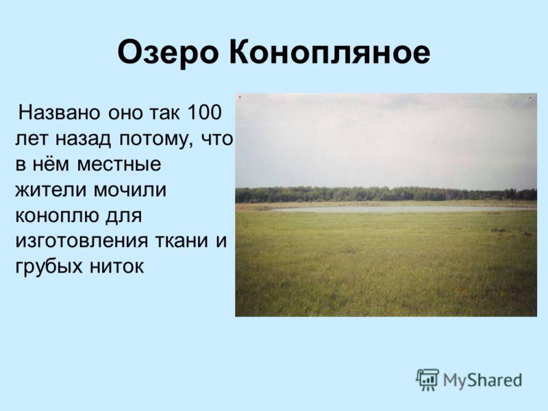 Озеро Конопляное Названо оно так 100 лет назад потому, что в нём местные жители мочили коноплю для изготовления ткани и грубых ниток