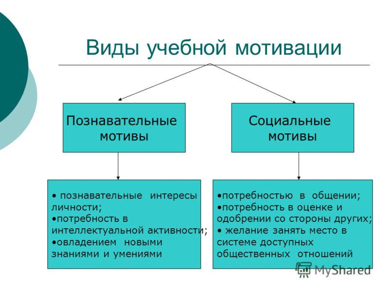 Виды учебной мотивации Познавательные мотивы Социальные мотивы познавательные интересы личности; потребность в интеллектуальной активности; овладением новыми знаниями и умениями потребностью в общении; потребность в оценке и одобрении со стороны друг