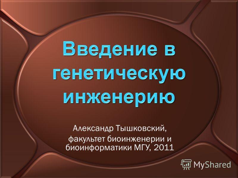 Александр Тышковский, факультет биоинженерии и биоинформатики МГУ, 2011