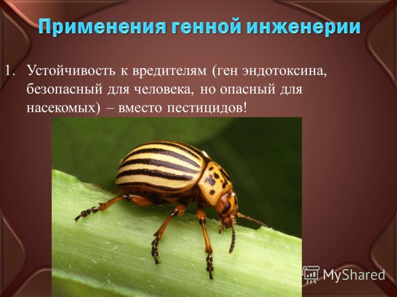 1.Устойчивость к вредителям (ген эндотоксина, безопасный для человека, но опасный для насекомых) – вместо пестицидов!