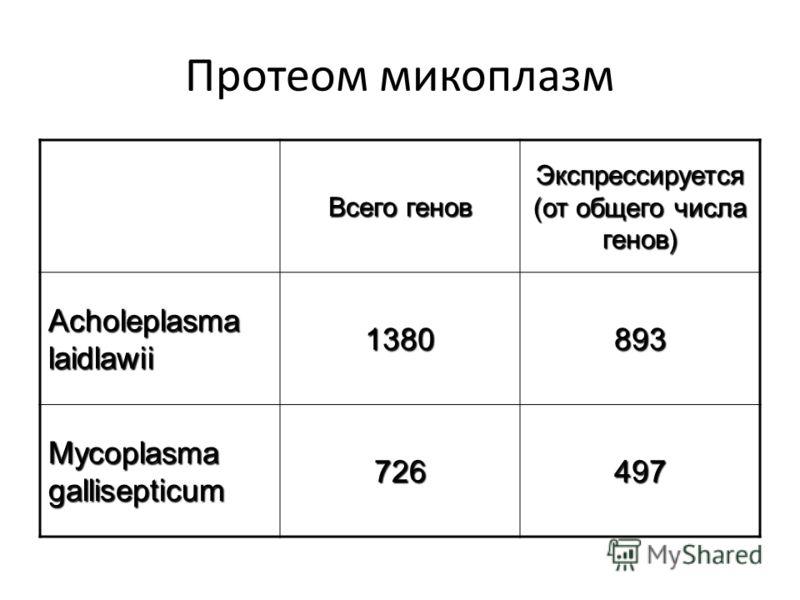 Протеом микоплазм Всего генов Экспрессируется (от общего числа генов) Acholeplasma laidlawii 1380 893893893893 Mycoplasma gallisepticum 726 497497497497