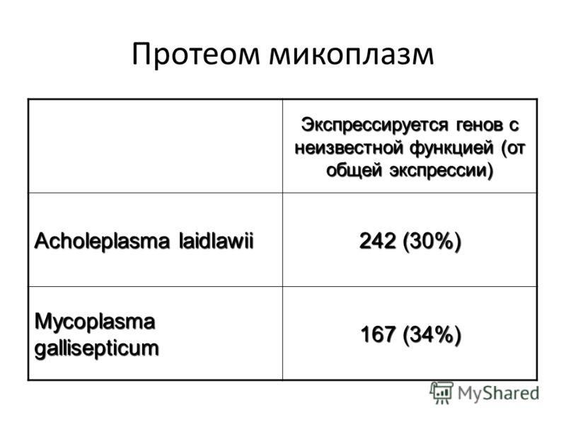 Протеом микоплазм Экспрессируется генов с неизвестной функцией (от общей экспрессии) Acholeplasma laidlawii 242 (30%) Mycoplasma gallisepticum 167 (34%)