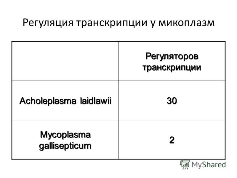 Регуляция транскрипции у микоплазм Регуляторов транскрипции Acholeplasma laidlawii 30 Mycoplasma gallisepticum 2