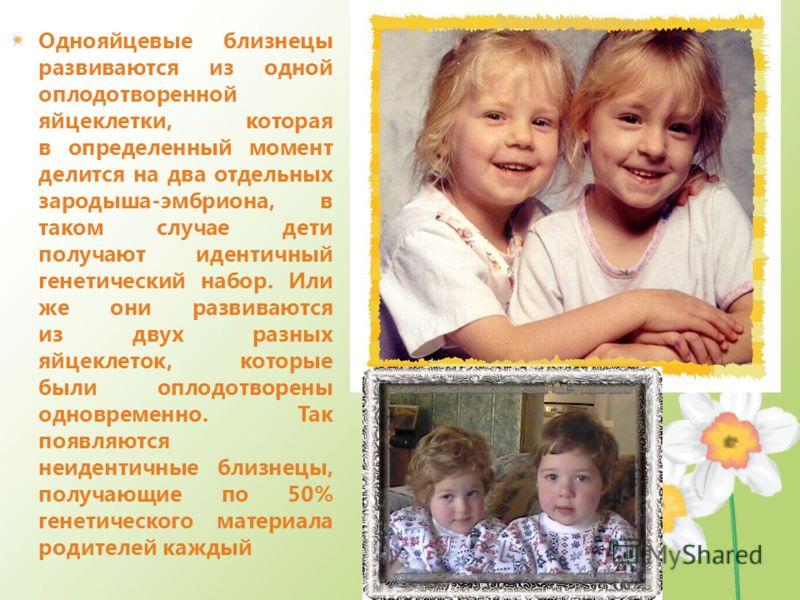 Однояйцевые близнецы развиваются из одной оплодотворенной яйцеклетки, которая в определенный момент делится на два отдельных зародыша-эмбриона, в таком случае дети получают идентичный генетический набор. Или же они развиваются из двух разных яйцеклет