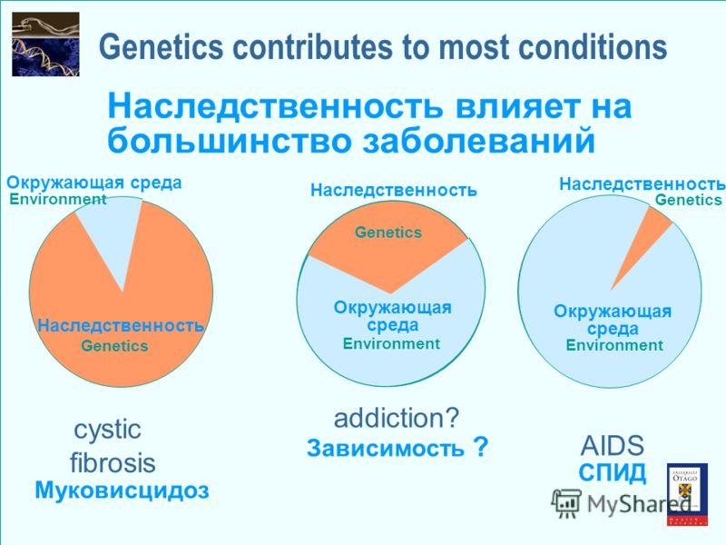 Genetics Environment addiction? Genetics contributes to most conditions Зависимость ? Наследственность влияет на большинство заболеваний Genetics Environment cystic fibrosis Наследственность Окружающая среда Муковисцидоз Genetics Environment AIDS СПИ