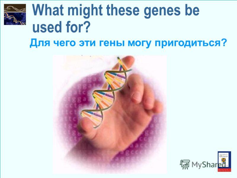 What might these genes be used for? Для чего эти гены могу пригодиться?