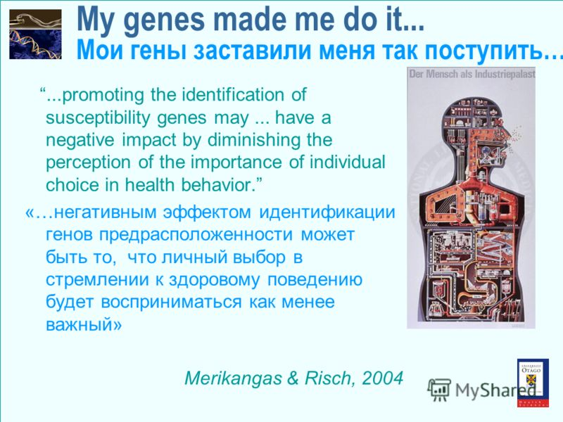 My genes made me do it... Мои гены заставили меня так поступить…...promoting the identification of susceptibility genes may... have a negative impact by diminishing the perception of the importance of individual choice in health behavior. «…негативны