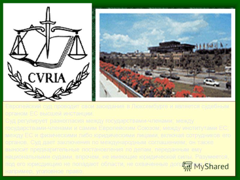 Европейский суд проводит свои заседания в Люксембурге и является судебным органом ЕС высшей инстанции. Суд регулирует разногласия между государствами-членами; между государствами-членами и самим Европейским Союзом; между институтами ЕС; между ЕС и фи