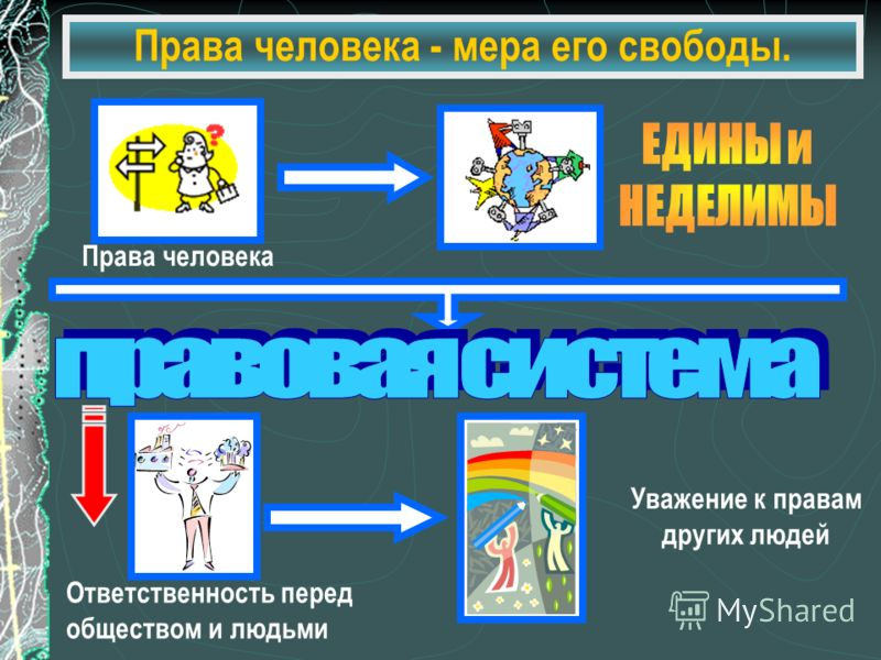 Право как мера свободы личности курсовая работа ru Курсовая работа Право как мера свободы личности