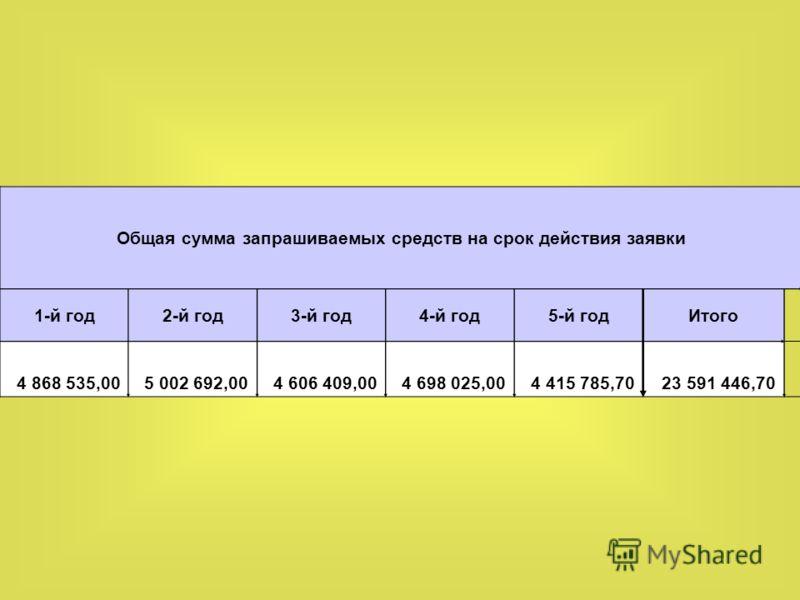 Общая сумма запрашиваемых средств на срок действия заявки 1-й год2-й год3-й год4-й год5-й годИтого 4 868 535,005 002 692,004 606 409,004 698 025,004 415 785,7023 591 446,70