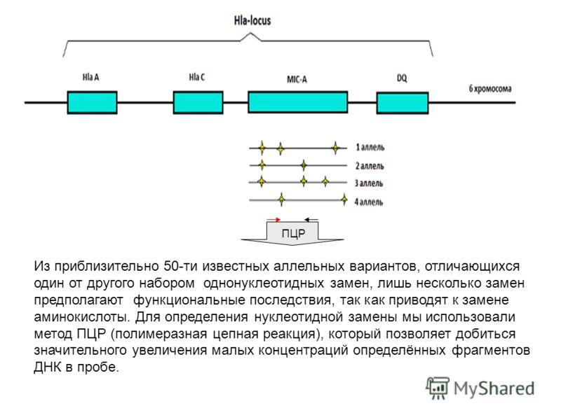 ПЦР Из приблизительно 50-ти известных аллельных вариантов, отличающихся один от другого набором однонуклеотидных замен, лишь несколько замен предполагают функциональные последствия, так как приводят к замене аминокислоты. Для определения нуклеотидной