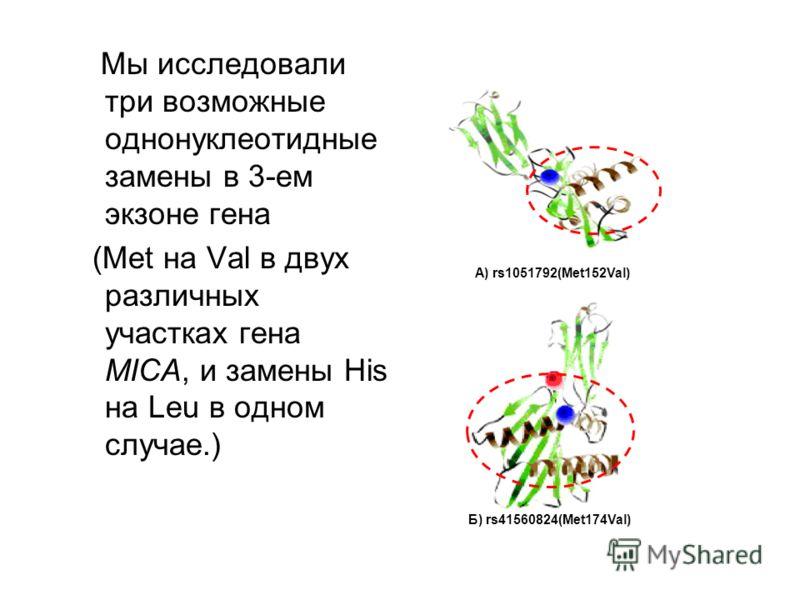 Мы исследовали три возможные однонуклеотидные замены в 3-ем экзоне гена (Met на Val в двух различных участках гена MICA, и замены His на Leu в одном случае.) А) rs1051792(Met152Val) Б) rs41560824(Met174Val)