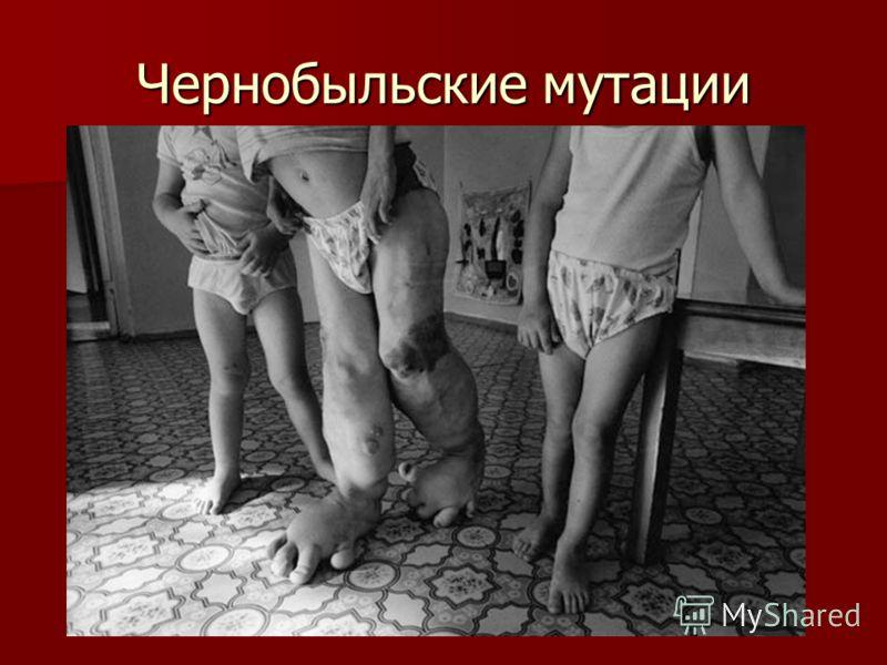Чернобыльские мутации