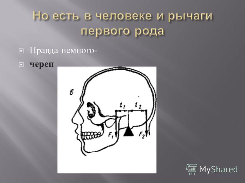 Правда немного - череп