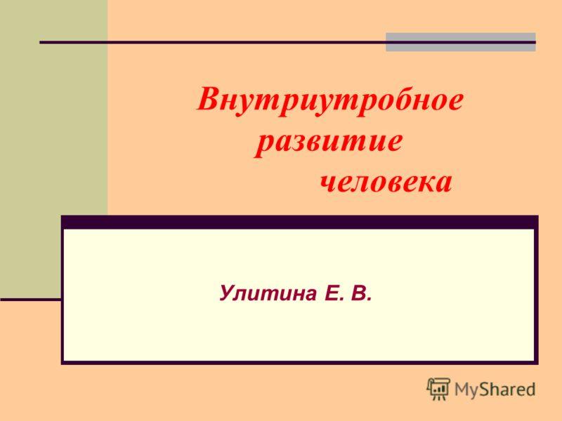 Внутриутробное развитие человека Улитина Е. В.