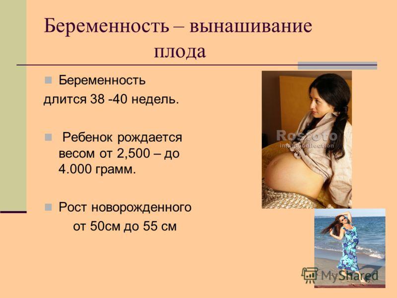 Беременность – вынашивание плода Беременность длится 38 -40 недель. Ребенок рождается весом от 2,500 – до 4.000 грамм. Рост новорожденного от 50см до 55 см