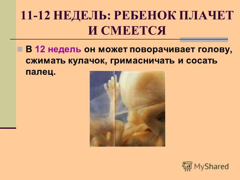 11-12 НЕДЕЛЬ: РЕБЕНОК ПЛАЧЕТ И СМЕЕТСЯ В 12 недель он может поворачивает голову, сжимать кулачок, гримасничать и сосать палец.