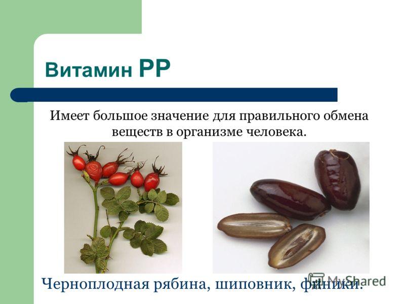 Витамин РР Имеет большое значение для правильного обмена веществ в организме человека. Черноплодная рябина, шиповник, финики.