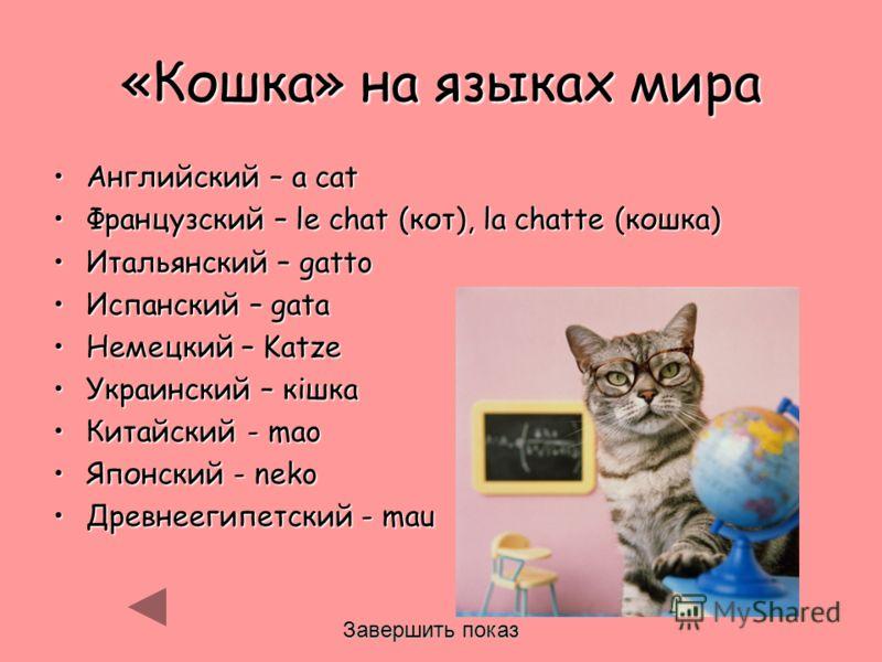 «Кошка» на языках мира Английский – a catАнглийский – a cat Французский – le chat (кот), la chatte (кошка)Французский – le chat (кот), la chatte (кошка) Итальянский – gattoИтальянский – gatto Испанский – gataИспанский – gata Немецкий – KatzeНемецкий
