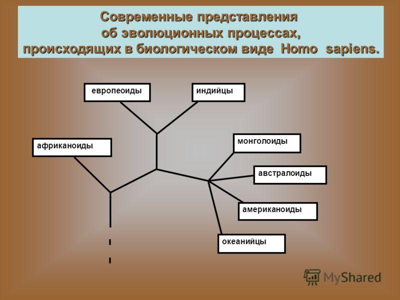 Современные представления об эволюционных процессах, происходящих в биологическом виде Homo sapiens. африканоиды европеоидыиндийцы монголоиды австралоиды американоиды океанийцы