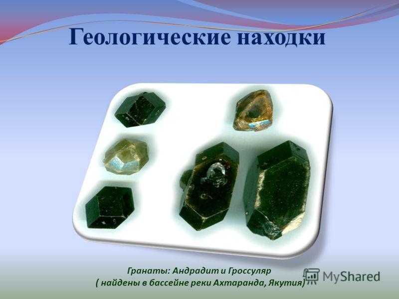 Геологические находки Гранаты : Андрадит и Гроссуляр ( найдены в бассейне реки Ахтаранда, Якутия )