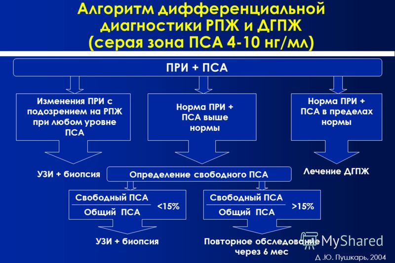 Алгоритм дифференциальной диагностики РПЖ и ДГПЖ (серая зона ПСА 4-10 нг/мл) ПРИ + ПСА Изменения ПРИ с подозрением на РПЖ при любом уровне ПСА Норма ПРИ + ПСА выше нормы Норма ПРИ + ПСА в пределах нормы УЗИ + биопсия Лечение ДГПЖ Определение свободно