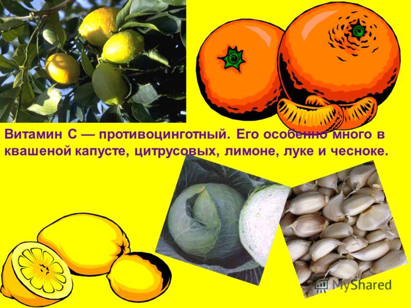 Витамин С противоцинготный. Его особенно много в квашеной капусте, цитрусовых, лимоне, луке и чесноке.