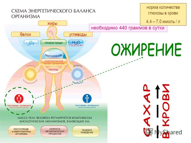 белкиуглеводы жиры необходимо 440 граммов в сутки норма количества глюкозы в крови 4,4 – 7,0 ммоль / л
