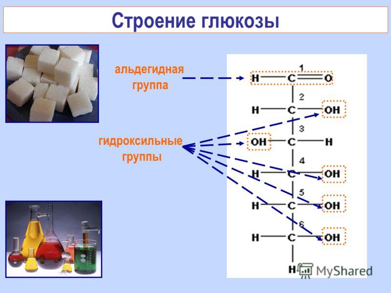 Строение глюкозы гидроксильные группы альдегидная группа