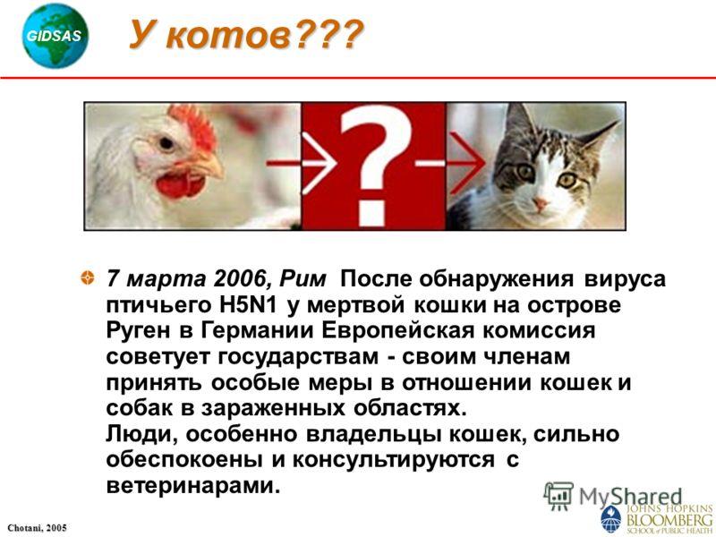 GIDSAS Chotani, 2005 У котов??? 7 марта 2006, Рим  После обнаружения вируса птичьего H5N1 у мертвой кошки на острове Руген в Германии Европейская комиссия советует государствам - своим членам принять особые меры в отношении кошек и собак в зараженны