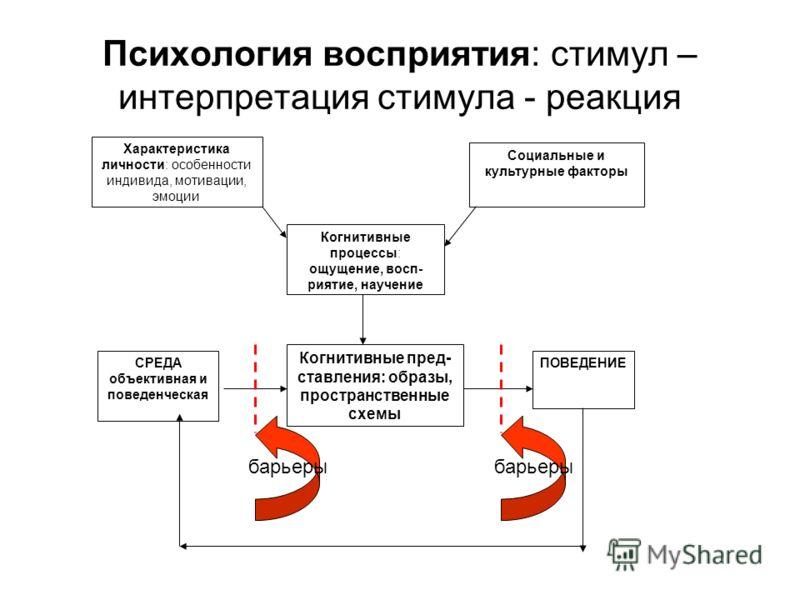 Психология восприятия: стимул