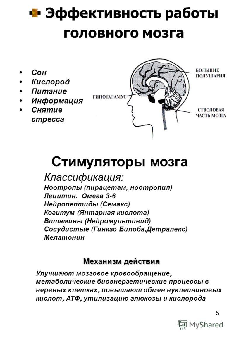 5 Эффективность работы головного мозга Сон Кислород Питание Информация Снятие стресса Классификация: Ноотропы (пирацетам, ноотропил) Лецитин. Омега 3-6 Нейропептиды (Семакс) Когитум (Янтарная кислота) Витамины (Нейромультивид) Сосудистые (Гинкго Било