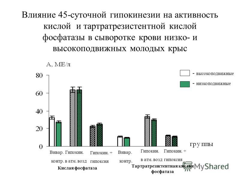 Влияние 45-суточной гипокинезии на активность кислой и тартратрезистентной кислой фосфатазы в сыворотке крови низко- и высокоподвижных молодых крыс - низкоподвижные - высокоподвижные Гипокин. + гипоксия Гипокин. в атм. возд Вивар. контр. Вивар. контр