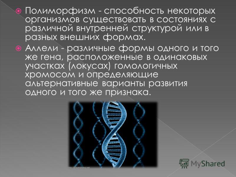 Полиморфизм - способность некоторых организмов существовать в состояниях с различной внутренней структурой или в разных внешних формах. Аллели - различные формы одного и того же гена, расположенные в одинаковых участках (локусах) гомологичных хромосо