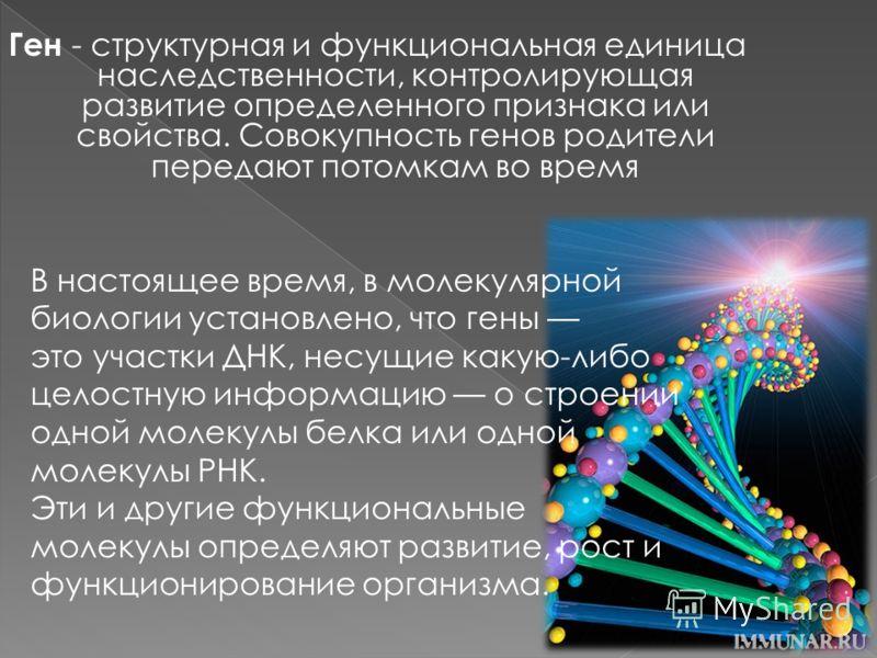 Ген - структурная и функциональная единица наследственности, контролирующая развитие определенного признака или свойства. Совокупность генов родители передают потомкам во время В настоящее время, в молекулярной биологии установлено, что гены это учас